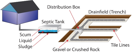 A diagram of a conventional septic system