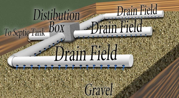 Layout of Drain Field